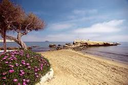 7. The Beaches of San Juan de Los Terreros